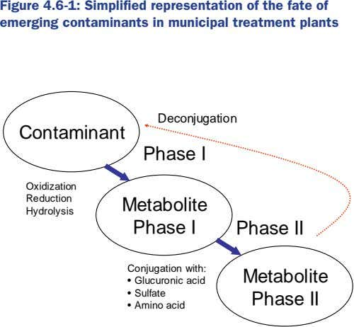 Figure 4.6-1: Simplified representation of the fate of emerging contaminants in municipal treatment plants Deconjugation