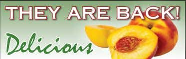 THEY ARE BACK! Delicious South Carolina Peaches Miller's Country Store, LLC 11205 Roth Rd., Grabill, IN