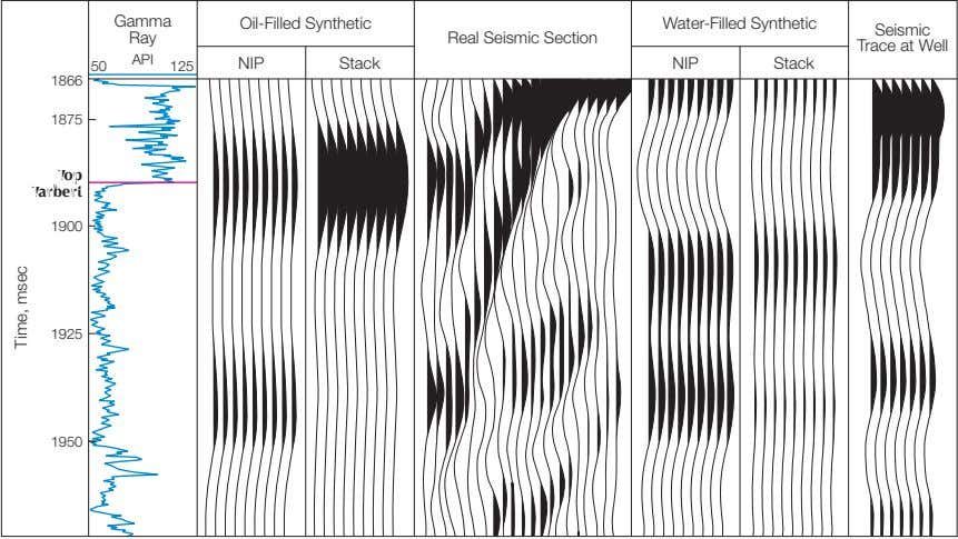 Gamma Oil-Filled Synthetic Water-Filled Synthetic Ray Real Seismic Section Seismic Trace at Well API NIP