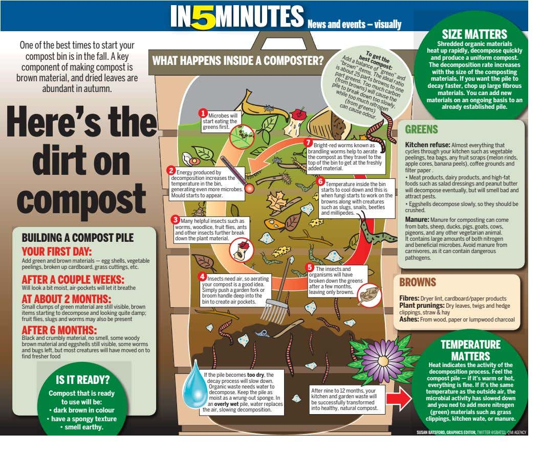 "To get the best compost: a balance of ""green"" and items. The ideal ratio is"