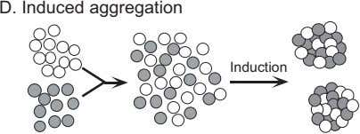 D. Induced aggregation Induction