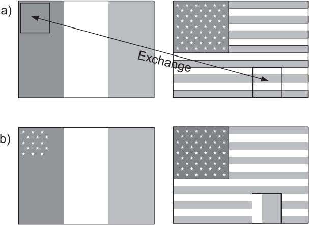 48 Tissue Exchange and Tissue Development Figure 3.10. French and U.S. flag model of positional value.