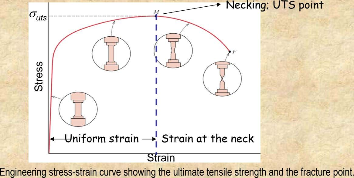 Necking; UTS point σ uts Uniform strain Strain at the neck Strain Engineering stress-strain curve