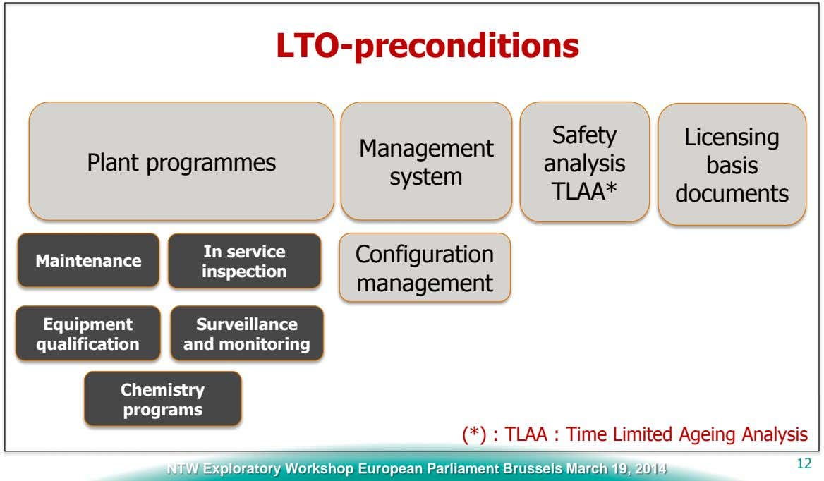 LTO-preconditions Safety Licensing Management Plant programmes analysis basis system TLAA* documents In service