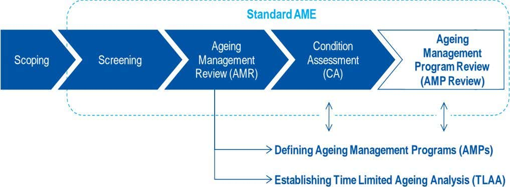 Standard AME Ageing Ageing Condition Management Scoping Screening Management Assessment Program Review Review