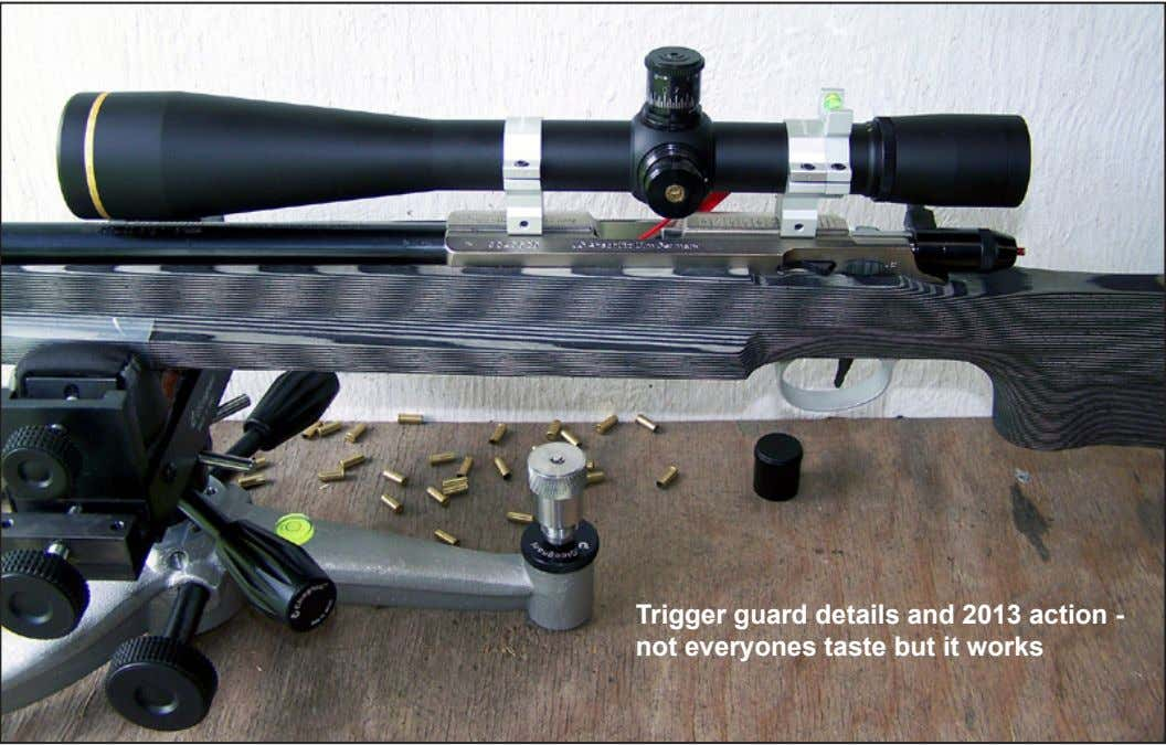 Trigger guard details and 2013 action - not everyones taste but it works