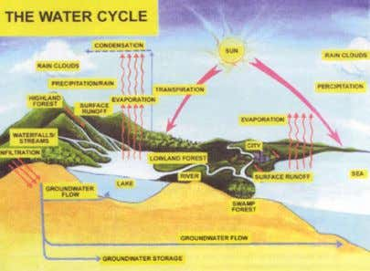 drinking water from the treatment plants to the population. What is water catchment area? Water Videos