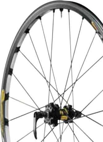 12 MOUNTAIN BIKE - CROSS-MOUNTAIN Crosstrail Disc Access to tubeless and Mavic specific technologies in a