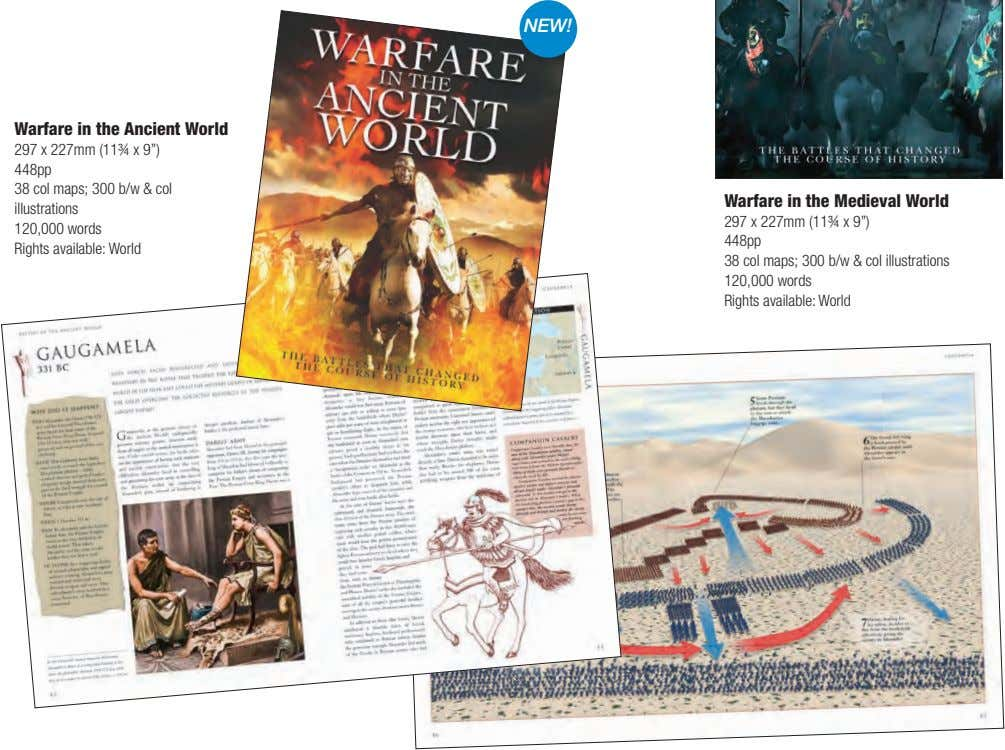 "NEW! Warfare in the Ancient World 297 x 227mm (11¾ x 9"") 448pp 38 col"