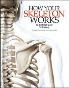 b/w a/ws 1,000 words Rights available: World ex NZ, US How Your Skeleton Works 244 x