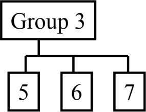 Group 3 5 6 7