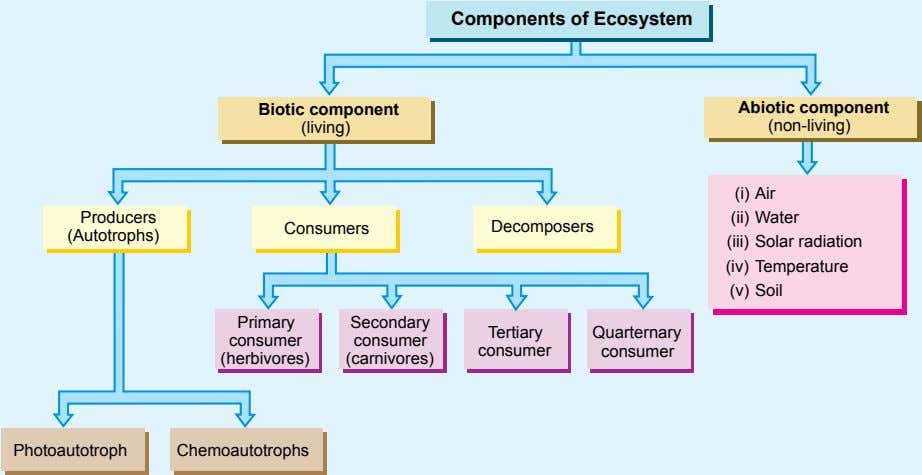 Components of Ecosystem Biotic component Abiotic component (living) (non-living) (i) Air Producers (ii) Water