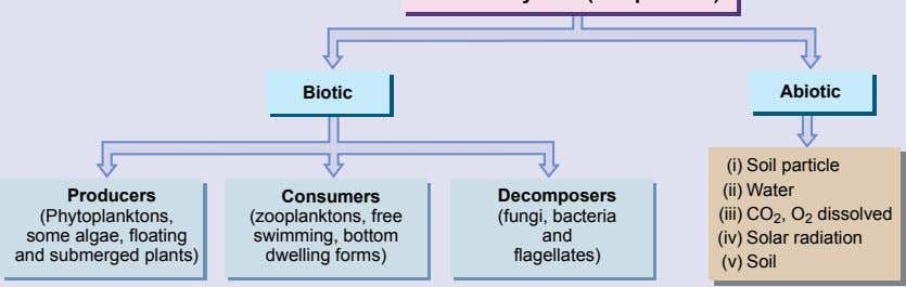 Biotic Abiotic (i) Soil particle (ii) Water Producers (Phytoplanktons, some algae, floating and submerged plants)