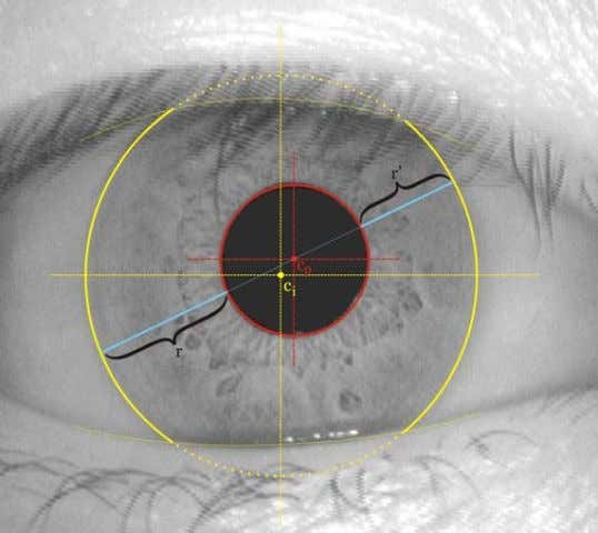 and listed on Appendix A. Following is a description of the Figure 5: Centerpoint of iris