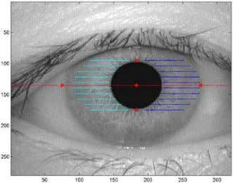 pupil center and radius ♦ Retrieve iris endpoints Figure 7: Image of iris with pupil center