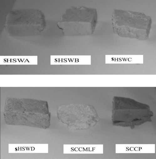 extract (SCP) using the method of Aworh and Muller (1987). Fig. 1: Different tofu from natural
