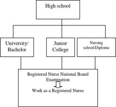 High school University/ Junior Nursing school/Diploma Bachelor College Registered Nurse National Board Examination