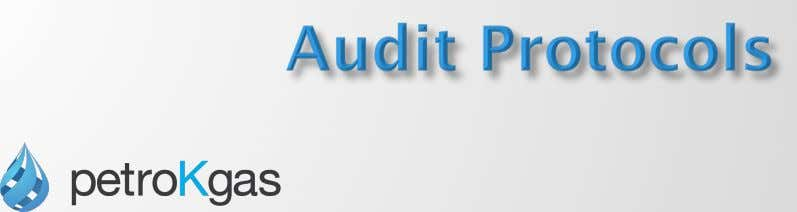 ' Audit Process is supported by Audit Protocols and Working Papers Audit Protocols ¨