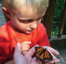 Finish with a butterfly-themed craft. Time: 10 a.m. - 11 a.m. Location: Great Swamp OEC. Cost: