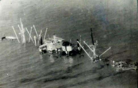 missions while the Sea Hawks carried out daylight missions. They struck both at pre-planned and opportunity