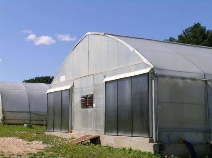 floor area for a greenhouse located in Southern Italy. Figure 5. Solar thermal flat collectors mounted