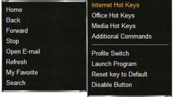 dropdown menu (see 8.3). The following window will appear: 2. Select the desired Internet function. 8.3.5