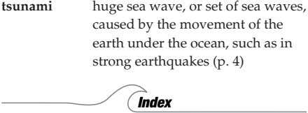 tsunami huge sea wave, or set of sea waves, caused by the movement of the