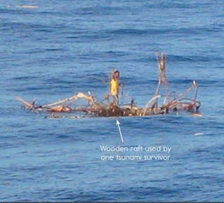 Wooden raft used by one tsunami survivor