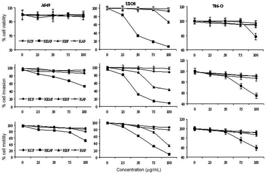 Fig. 1—Effect of kombucha tea extracts on cell viability, invasion and motility of A549, U2OS