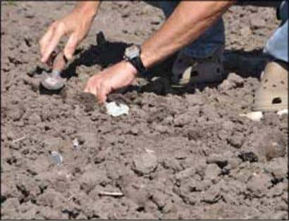 it is usually better to have some small surface clods. Use a garden trowel to dig