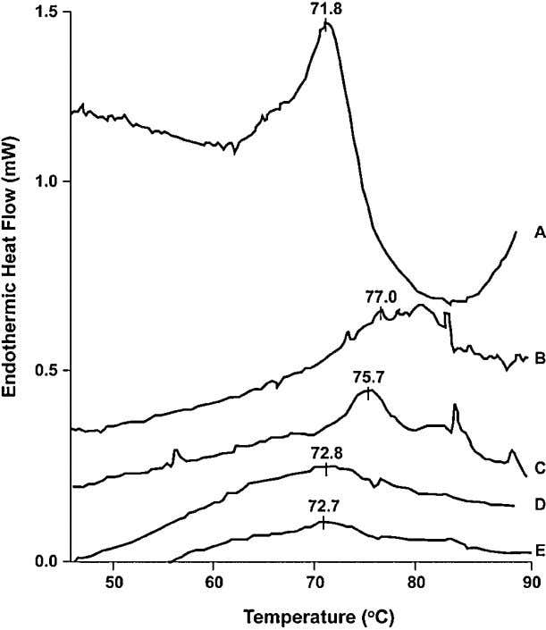 Analysis of Foodborne Bacteria 151 Figure 7.1. DSC of C. perfringens vegetative cells. Curve A, isolated