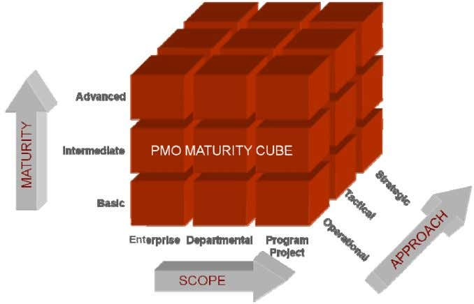 y the maturity level (basic, intermediate, or advanced). Figure 3. The Three Dimensions of the PMO