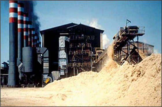 1. Biomass Heating Background Figure 9: A Brazilian Mill that Makes Use of Bagasse, a Byproduct