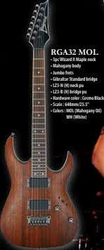 RGA32 MOL • 3pc Wizard II Maple neck • Mahogany body • Jumbo frets •