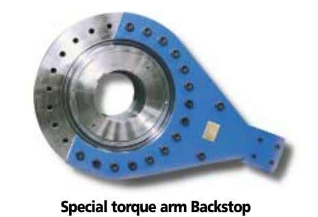 Special torque arm Backstop