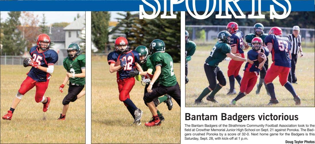 Bantam Badgers victorious The Bantam Badgers of the Strathmore Community Football Association took to the