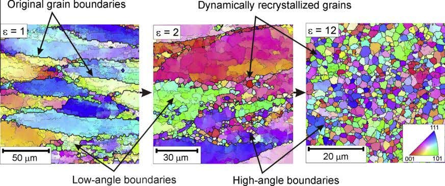 . The changes in the microstructure are associated with Fig. 4. Development of new grains due