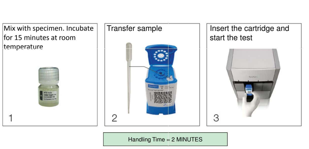 Mix with specimen. Incubate for 15 minutes at room temperature Transfer sample Insert the cartridge