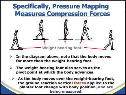 Specifically,Specifically, PressurePressure MappingMapping MeasuresMeasures CompressionCompression ForcesForces Weight