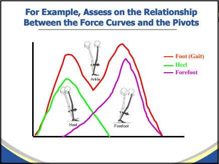 ForFor Example,Example, AssessAssess onon thethe RelationshipRelationship BetweenBetween thethe ForceForce CurvesCurves