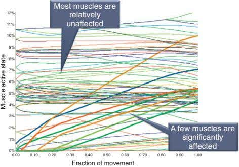 12% Most muscles are relatively unaffected 11% 10% 9% 8% 7% 6% 5% 4% 3%