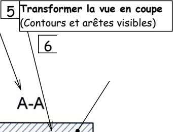 Transformer la vue en coupe
