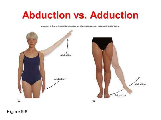 Occurs in : Coronal plane Abduction : The movement away from the midline Adduction : The