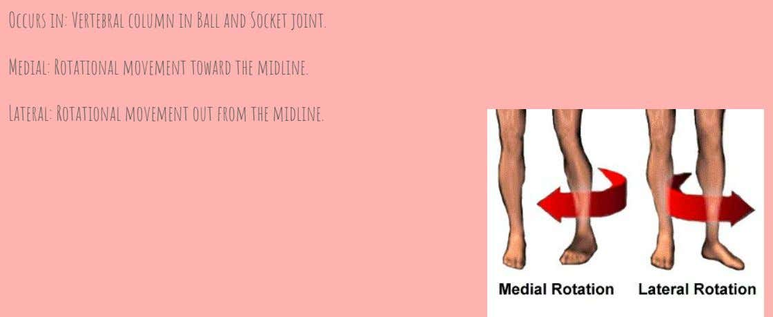 Occurs in: Vertebral column in Ball and Socket joint. Medial: Rotational movement toward the midline.
