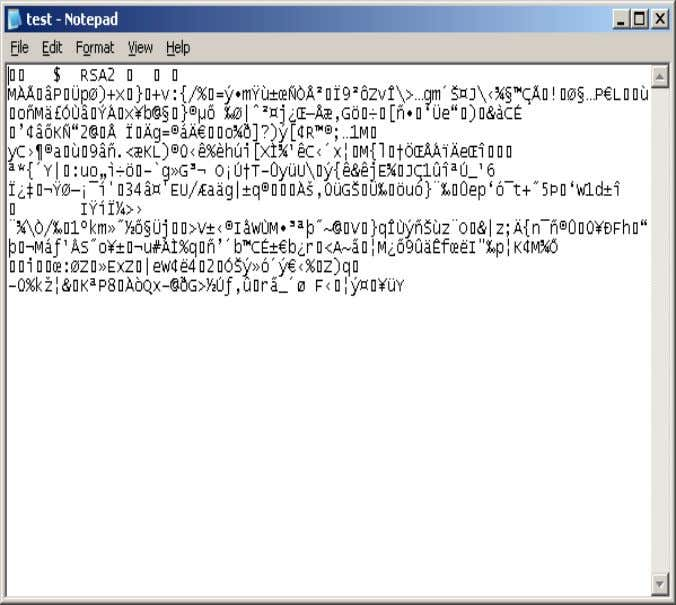 candidates. Figure :- 1.5 Successful output of SN.EXE Figure :- 1.6 Sample view of test.snk file
