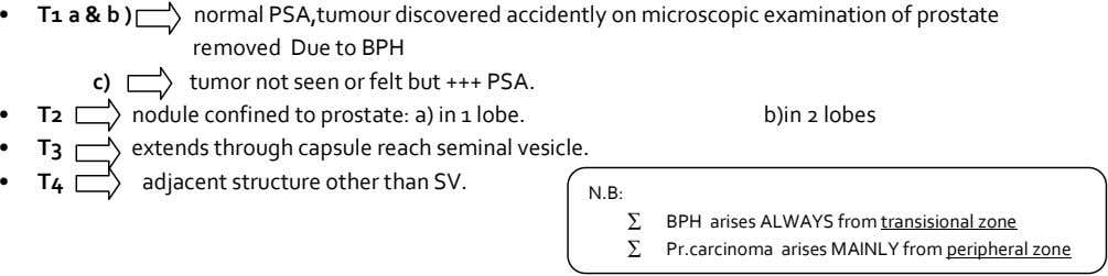 • T1 a & b ) normal PSA,tumour discovered accidently on microscopic examination of prostate