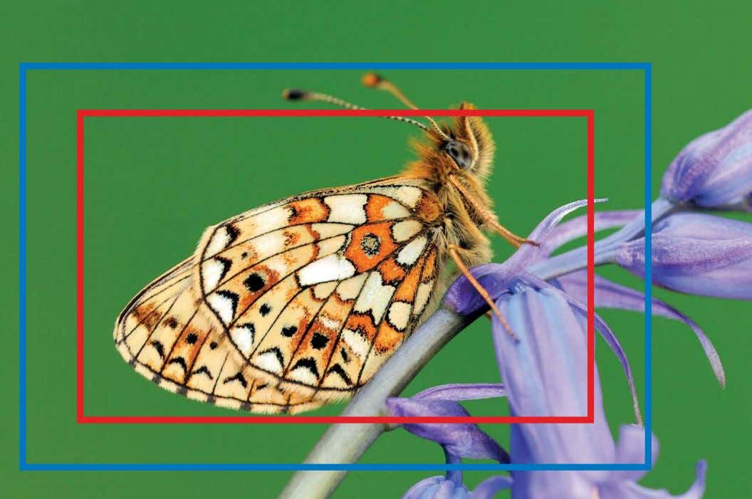 SENSOR SIZES The full image shows the area captured using a full-frame sensor, while the