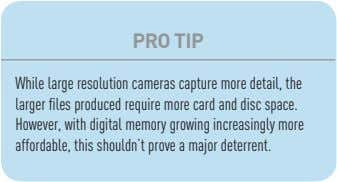 PRO TIP While large resolution cameras capture more detail, the larger files produced require more