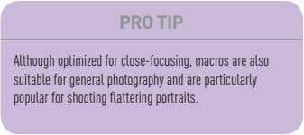 PRO TIP Although optimized for close-focusing, macros are also suitable for general photography and are