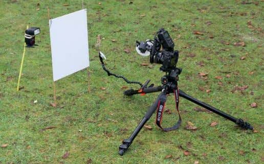 to achieve the desired effect. The distance between A SIMPLE OUTDOOR STUDIO An outdoor studio is